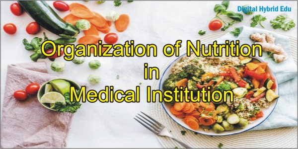 Organization of nutrition in medical institution
