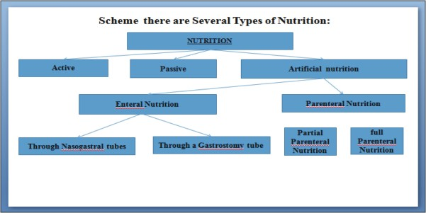Scheme there are Several Types of Nutrition